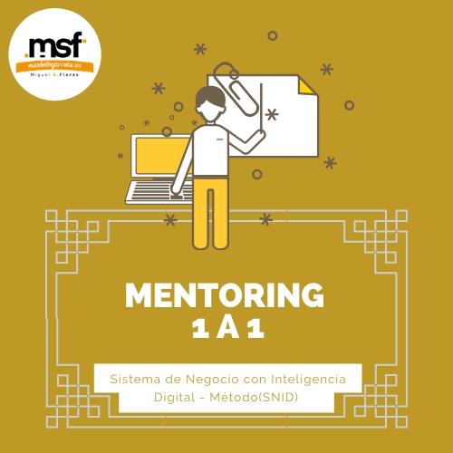 MENTORING 1 A 1 – Sistema de Negocio con Inteligencia Digital – Método(SNID)